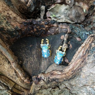 Glorikami Dark Blue Stag Beetle earrings