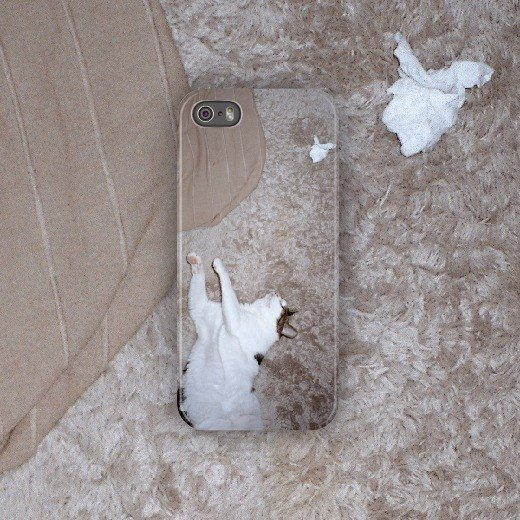 Cat four-cat four / 2014 / phone case