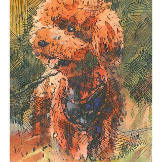 Hand painted printed postcards Teddy Poodle Dog