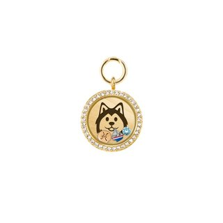 UniQ Personalized Pet Brand - Gold (L medium and large dogs)