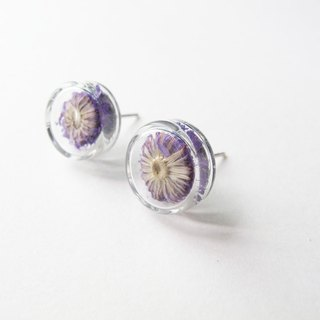 * Rosy Garden * Dried flowers purple Anaphalis sinica round glass earring