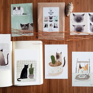 "Postcard 4x6"" cat set#3/3 6 pcs."