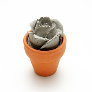 Concrete Rose Mini Pot  - Eternity Series