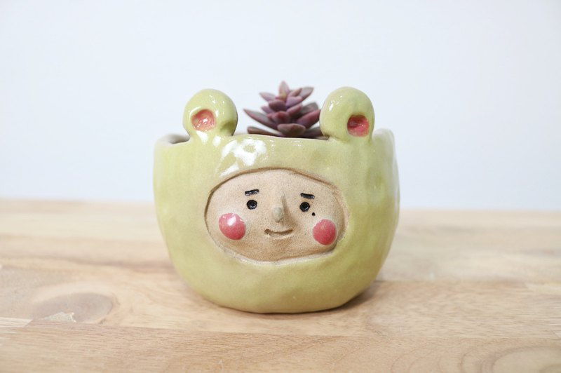 阿囡小熊盆栽