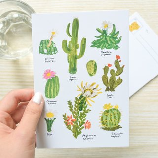 Nature Collection-Cactus postcard / buy 3 get 1