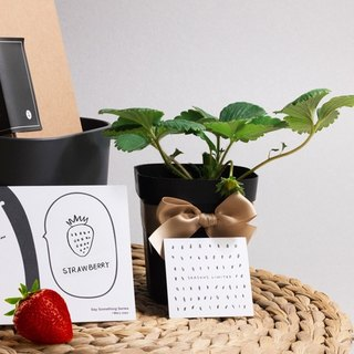 Strawberry fruit gift box