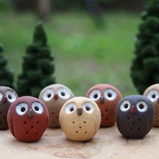 [Owl Village Owls Village] Tao hand made owl/Babies gift box seven colors optional/order orders