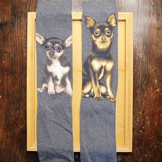 JHJ Design Canadian brand of high saturation knitting socks Chihuahua dog series (female) puppy dog ​​cute
