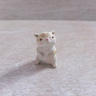 Cat - ignorant curious baby cream terracotta