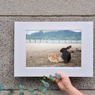 Limited Rabbit Photo Art Original - 依偎