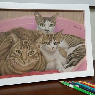 Pure hand-painted color pencil pet portrait three 3100 yuan (including box)