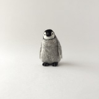 Emperor penguin chicks Facing front