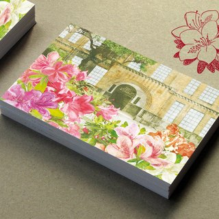 National Taiwan University campus postcard illustration - Azalea AZALEA