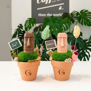 Green fruit confession small object - boulder like potted plant + experience soap + confession stand / send small bag
