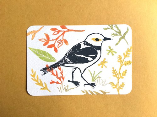 Plant bird prints Postcard Grades a group of four