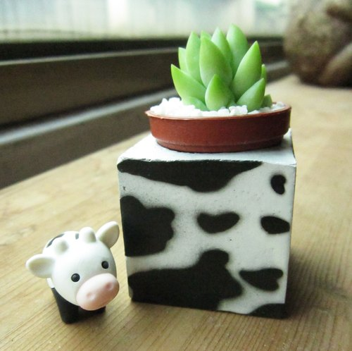Cows ~! Magnet potted succulents