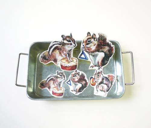 Squirrel band sticker set