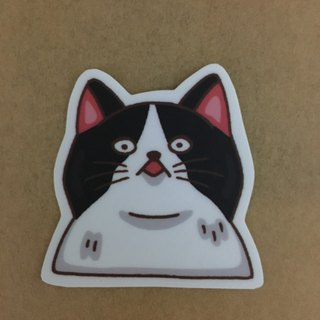 Cat daily stunned small waterproof sticker SS0071