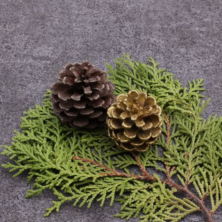 Pinecones decorated with brass natural plants