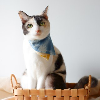 Mood Indigo - Breakaway cat collar & Two-Tone Bandana