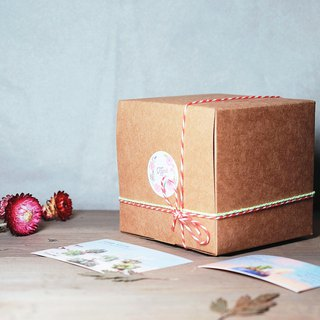 Christmas harvest potted gift box: Christmas cement basin into the 3 - meat dried flower cement DIY material package Potted pepper fruit plants