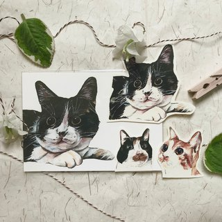 Surprise!! cat cat color sticker set