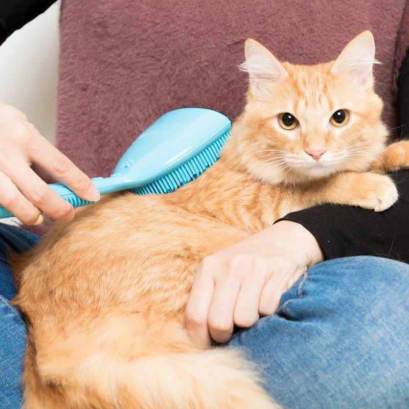 專利點點按摩寵物梳(藍色款-豐厚毛量)貓狗都可使用 寵物梳毛