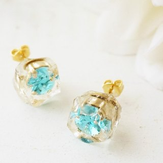Ice Swarovski ♡ earrings / earrings
