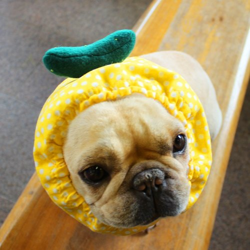 Chilled dog Tsuru * Yellow - * cucumber