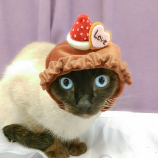 Strawberry chocolate pet hat