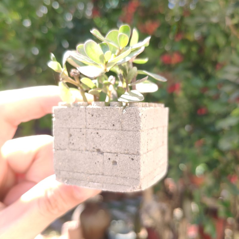 Cement building block modeling magnet mini flower pot compatible Lego bricks without plants