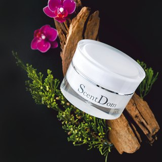 Shi Xiang Dianling Perfect Repair Day Cream