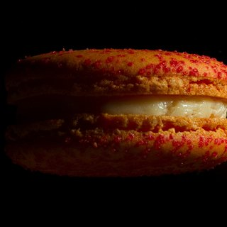 HERSTON [grapefruit] 1 into the Macaron