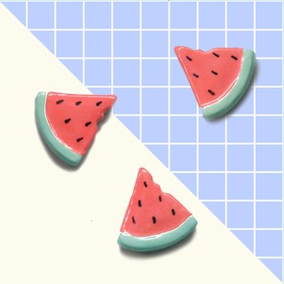 brooch/magnet watermelon