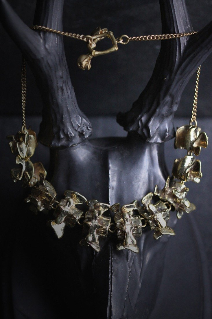 Golden Back Bone Necklace by Defy/Anatomical Jewelry/Anatomy Accessories