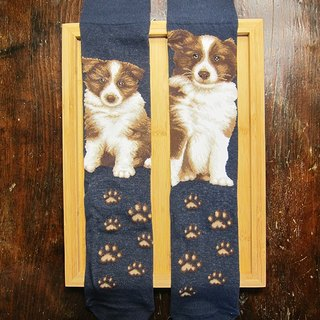 JHJ Design Canadian brand of high saturation knitting socks series Border Collie dog (male) puppy dog ​​cute