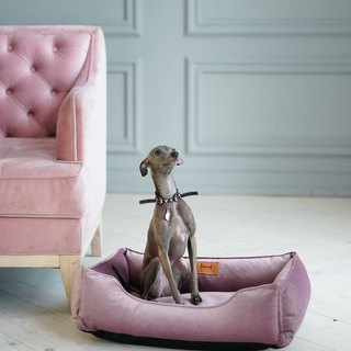 Velour bed Pink for middle sized dog M Size 70x50 cm