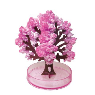 Magic Cherry Blossom (Large/15cm) - Exclusive Cherry Blossoms