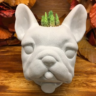 French Bulldog - Pen case / Pots