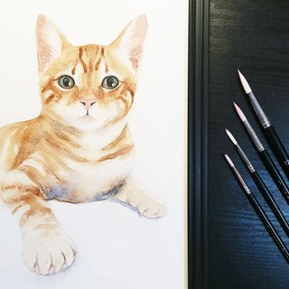 Custom Pet Watercolor/Single Watercolor (with box)