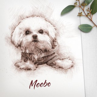 Customized character pet painting / paper card (sketch wind) can add photo frame from 100 yuan