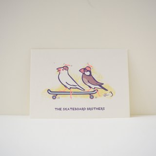 "postcard:Java Sparrow - ""The Skateboard Brothers"""