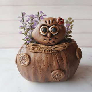 P-57 Cute Eye Eagle │ Yoshino Hawk x Owl Pottery Flower Pure Handmade Design Succulent Healing Cute Unique Gift