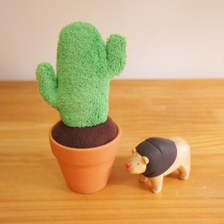 Hand plants: cactus small potted plants