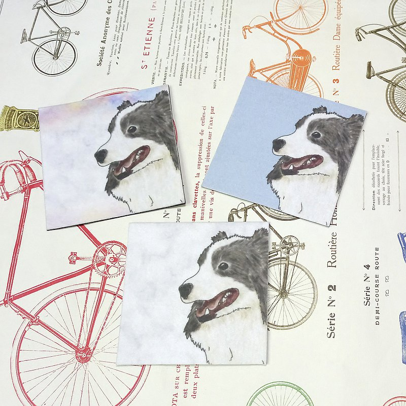 Border Collie-Nonwoven Coaster-Absorbing Coaster ~ Rainbow Dyeing