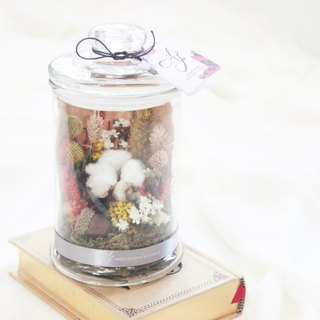 Dried flower glass bottle display. Night light / autumn x kapok