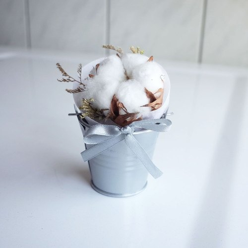 【Q-cute】 dry flower small potted flower series - soft cotton cotton