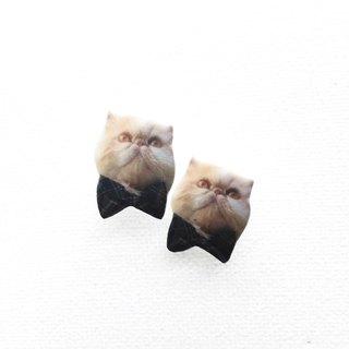 Exotic Persian Cat in Bow tie Kiki 925 silver stud earrings