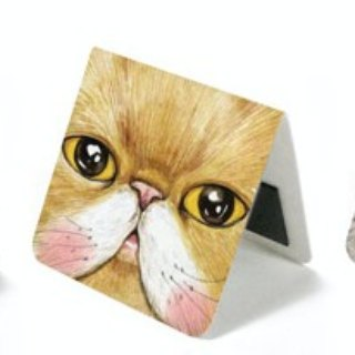 Bookmark & ​​Cabinet Magnet - Close Up Cats