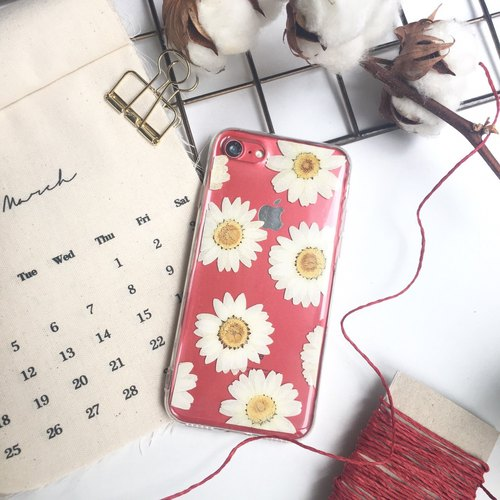White Daisy :: Valentine's Day Dry Flower Phone Case Air Compressed Shell Flower Phone Set Gift